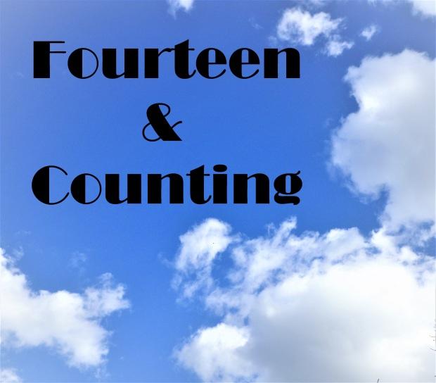Fourteen and Counting Simply Magan Joy Blog.JPG